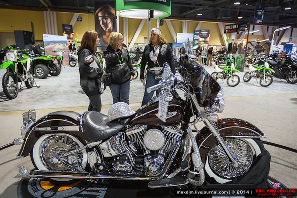 harley davidson market structure Harley davidson inc, harley-davidson motor motorcycle market since 1986 and ended 2003 with a domestic market share of 495% (harley-davidson models.